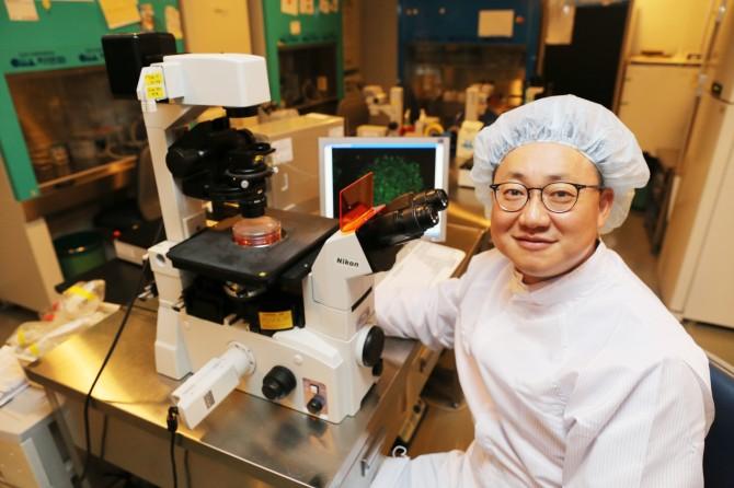 이동률 차의과대 교수팀은 체세포 복제 배아줄기세포의 성공률을 높일 수 있는 방법을 개발해 줄기세포 치료제 개발에 속도를 내고 있다. - 차병원 그룹 제공